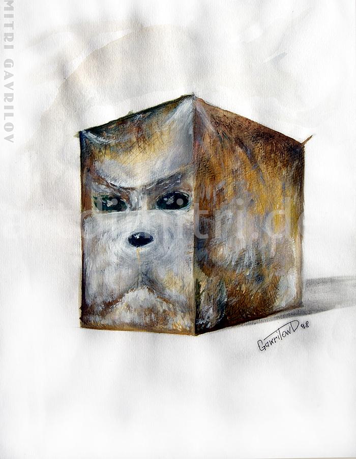 Hund-Quadrat